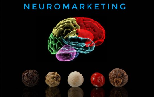 Neuromarketing 'para incrédulos'