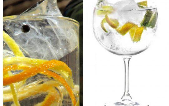 Gin tonic: del enebro al pepino de cristal