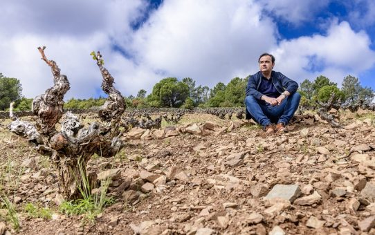 """Sotomanrique: la bodega que """"susurra"""" a los viñedos"""